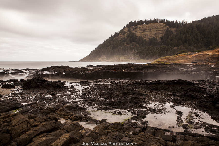 Oregon_Coast-2015_02_18-157-6L