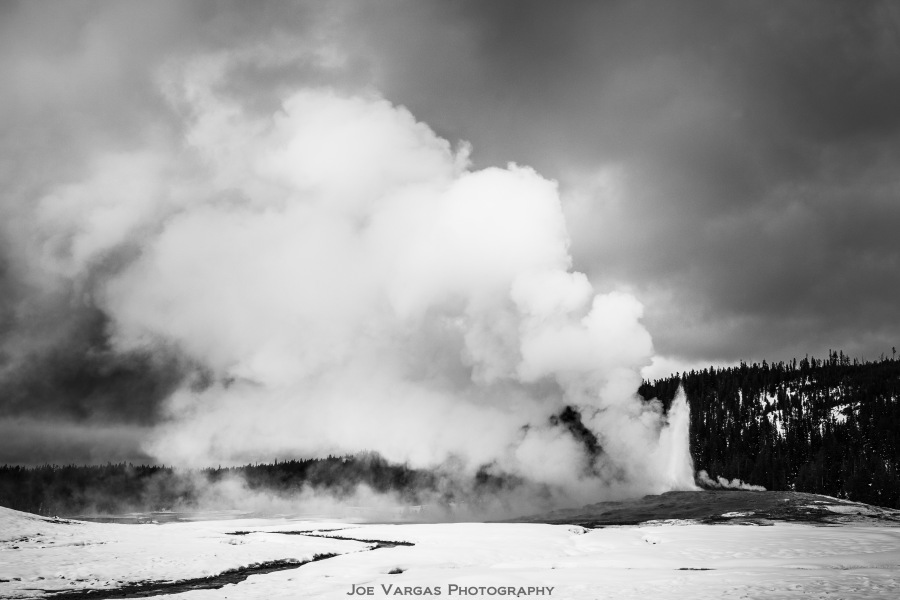 Old Faithful B&W 2