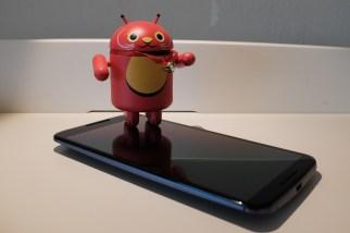 Nexus 6 and Lucky Cat