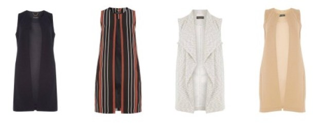 Dorothy Perkins Sleeveless Jackets