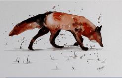 foxwatercolour