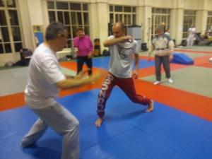 demonstration de capoeira a paris