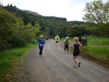 One of our busier moments on the run - the Kahuterawa Road out-and-back gravel section on the way to Black Bridge.