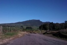 The beautiful Mt Karioi - the playing ground for many a runner and cyclist.
