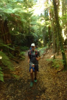 Much of the day was run in the shaded forest, ensuring mild temperatures perfect for running.