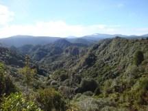 Beautiful views over the Tongariro National Park.