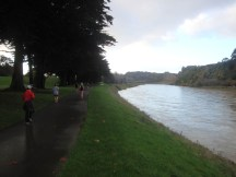 The Bridle Track next to the Manawatu River.