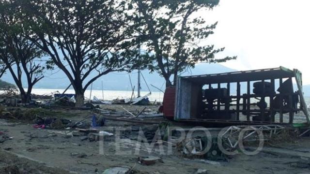 tsunami palu tempo
