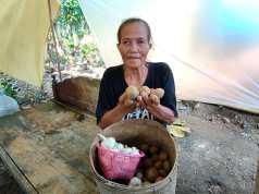 Mbah Karsi, nenek asal Desa Wonotolo Gondang penerima BPNT saat menunjukkan kentang yang diterima dari program BPNT yang ukurannya sangat kecil dan dinilai tidak layak. Foto/Wardoyo