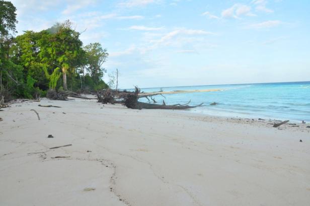 Pantai Pulau Venu