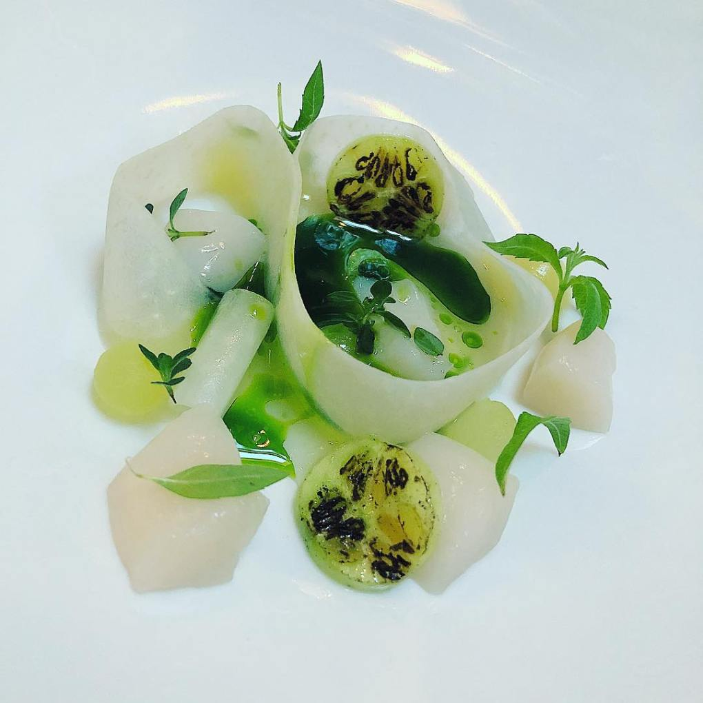 Scallops and kohlrabi at Restaurant Niels