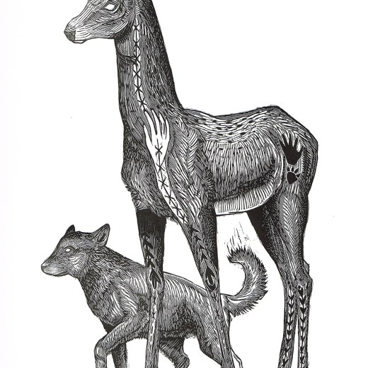 Companions Print Edition by Johanna Mueller