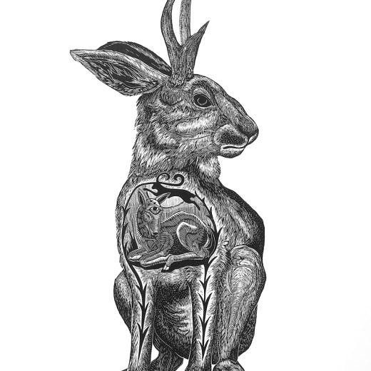 Jackalope Print Edition by Johanna Mueller