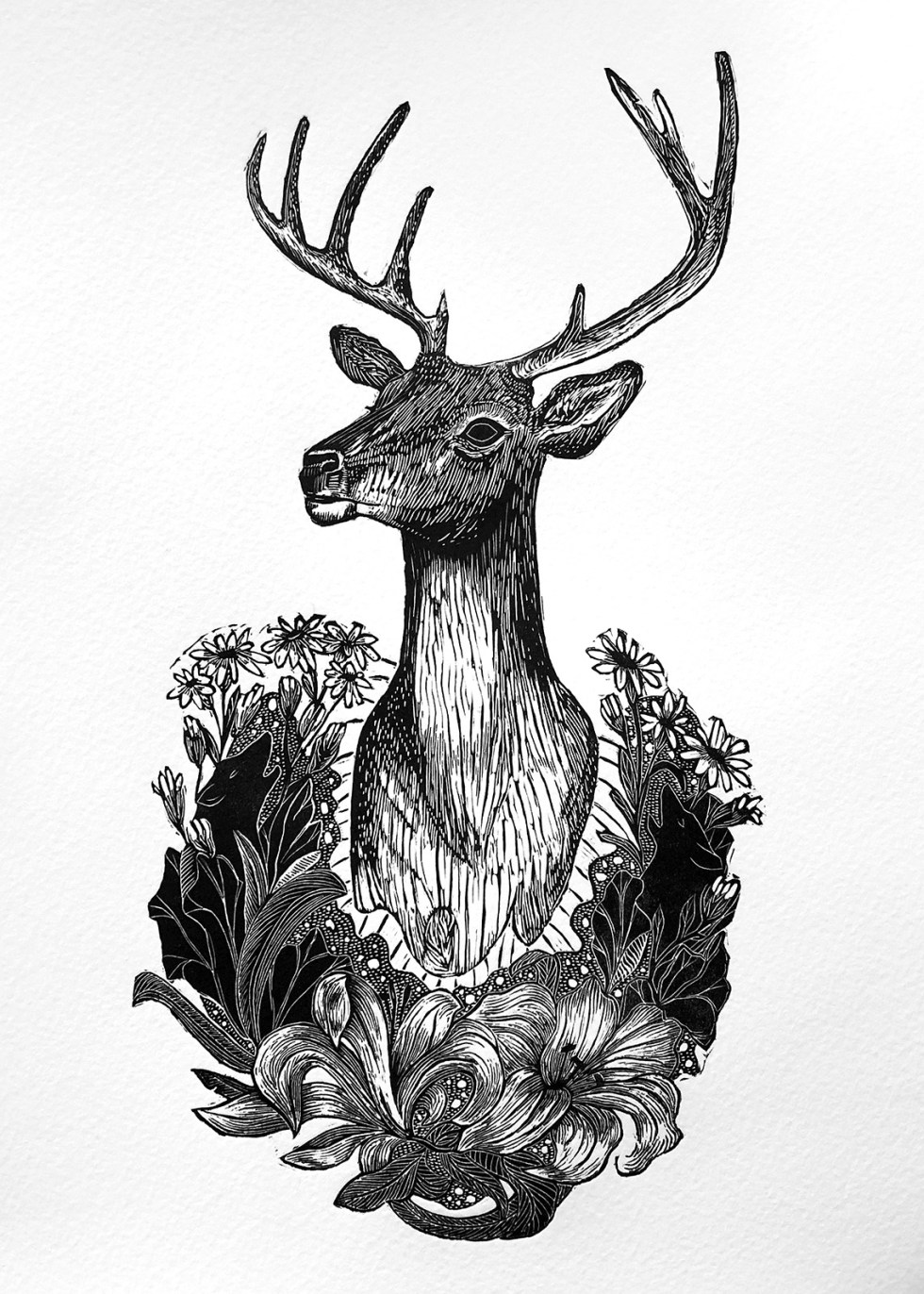 Trophy I Stag Print Edition by Johanna Mueller
