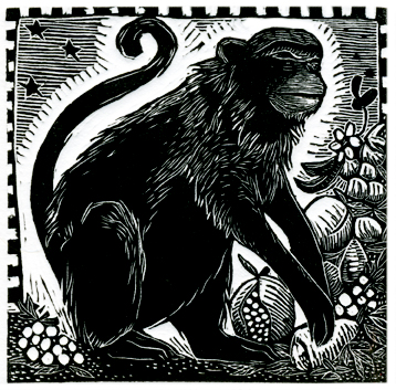 Year of the Monkey Print Edition by Johanna Mueller