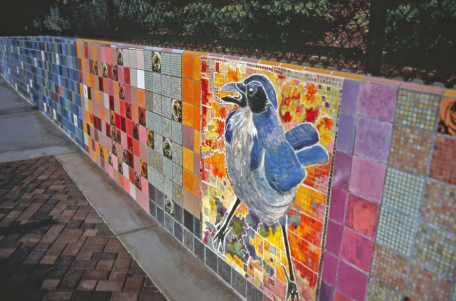 Birdwatch-Ted-Fairfield-Park