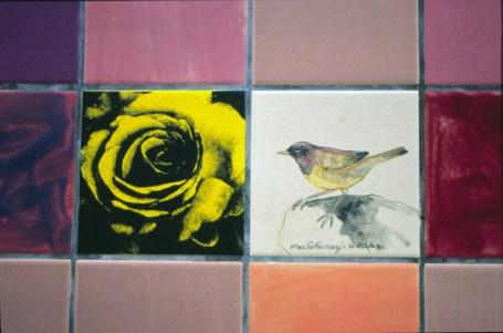 Ted-Fairfield-Park-Birdwatch-tiles