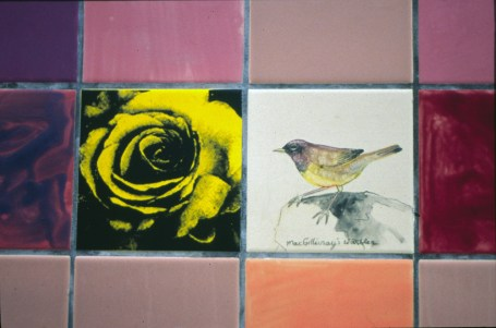 Ted-Fairfield-Park-Birdwatch-tiles