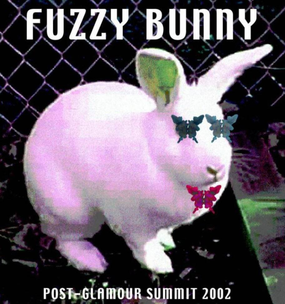 FUZZY_BUNNY_T-SHIRT_copy