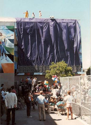 Harvey milk curtain unveiling
