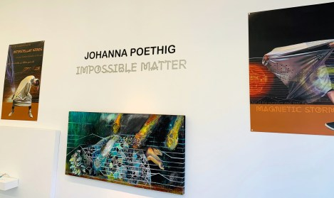 Impossible Matter wall_Johanna Poethig