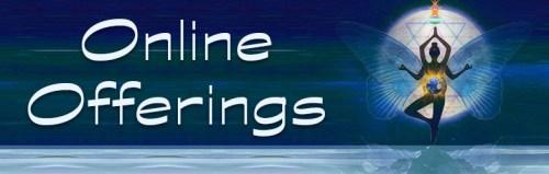 Shakti Shop Online Offerings