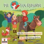 Cover Fuchsbande CD 15