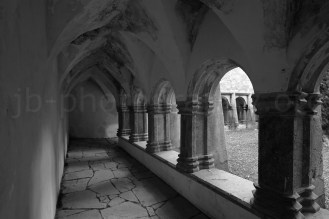 Vaulted cloister, Muckross Friary