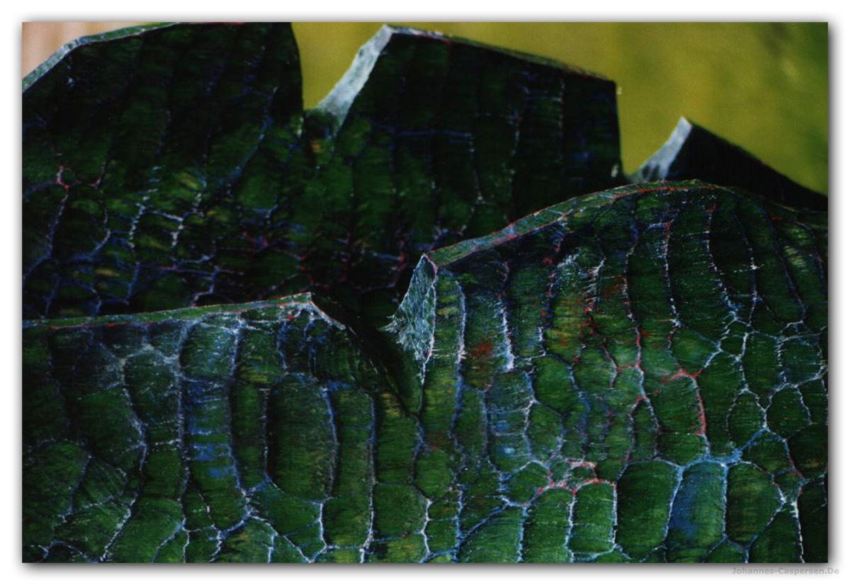 2000 Bewegte Oberfläche von Johannes Caspersen