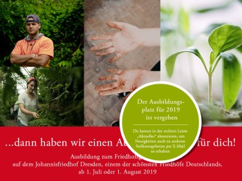 Ausbildungsplatz in Dresden: Wir suchen dich!