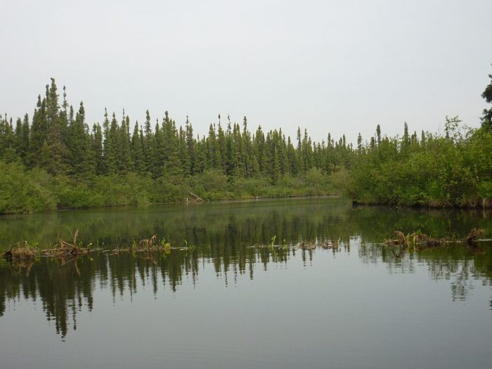 Lower reaches of the Blondeau River