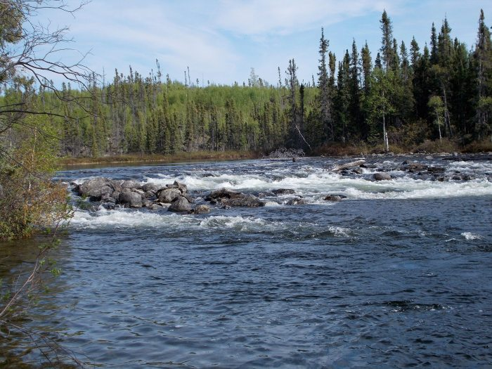 View of the rapids from our campsite at the end of Chipman Lake