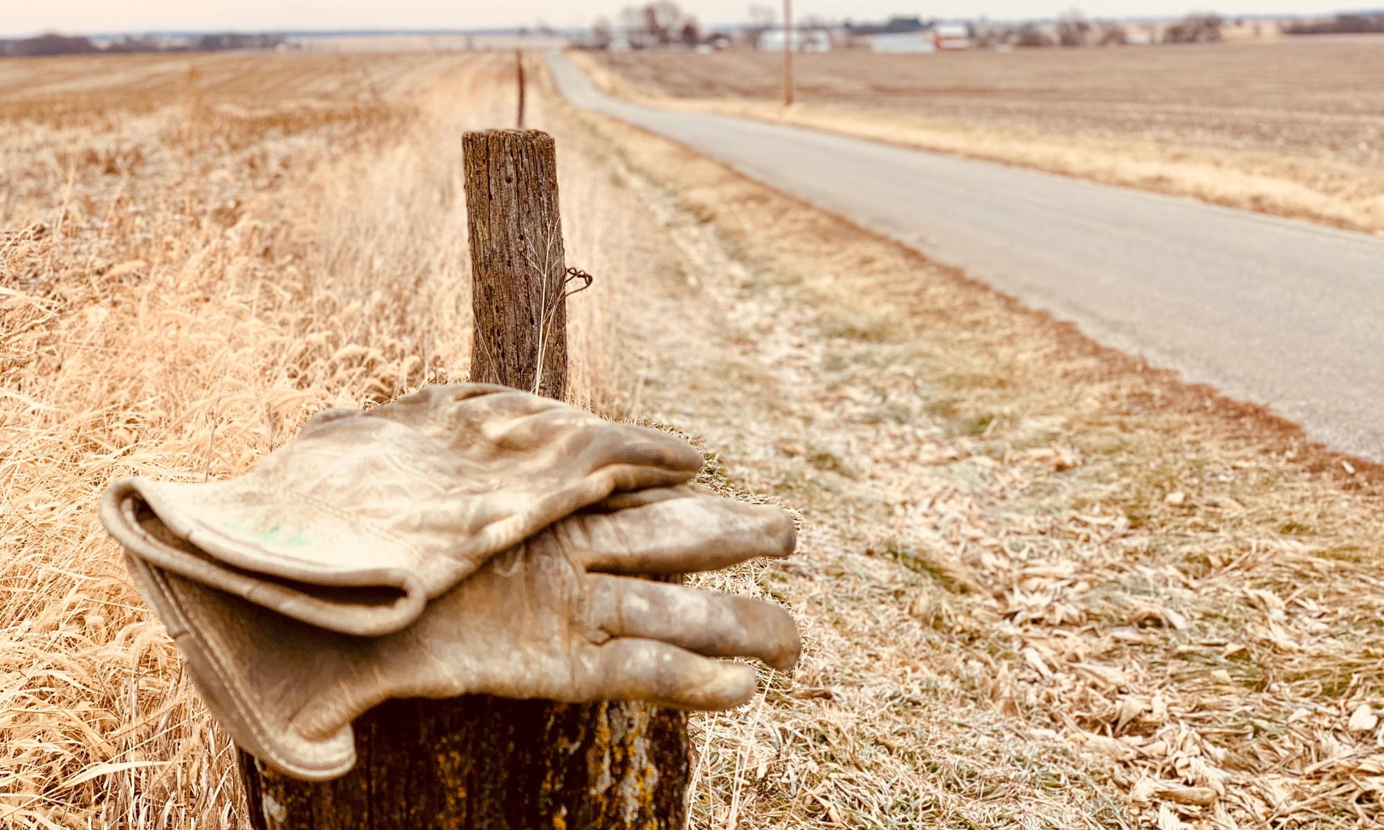 farmer gloves 022220