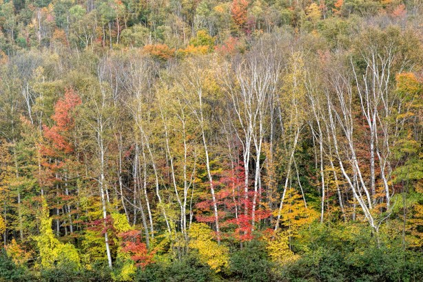 20131001_New Hampshire_0932