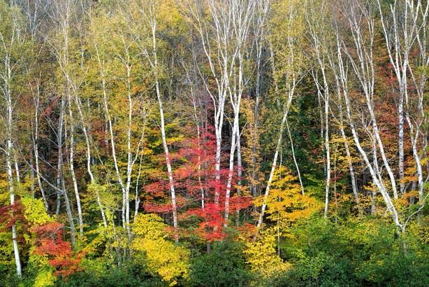 20131001_New Hampshire_0940