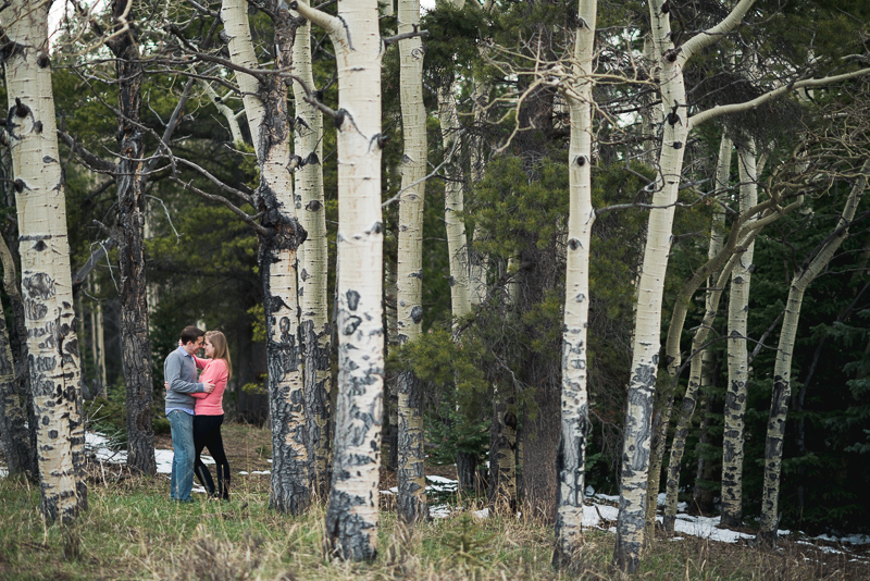 Evergreen Engagement Photos kissing in forest