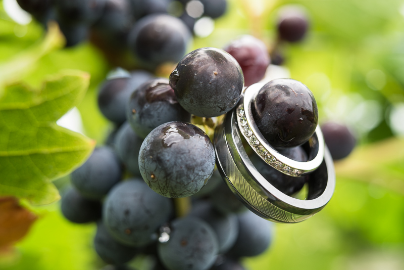 Palisade Wedding Photography rings and grapes
