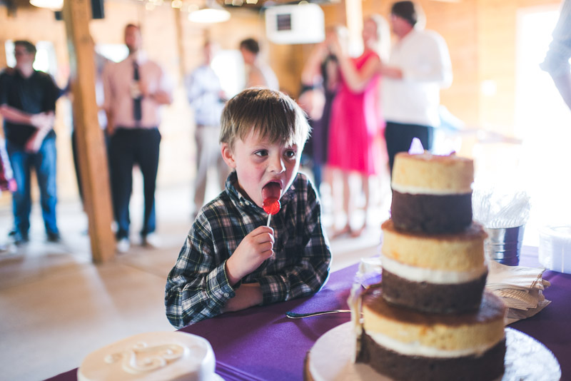 chatfield botanic gardens wedding photography kid wants cake