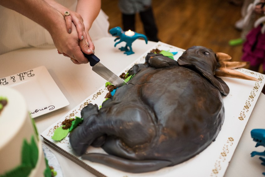 morrison willow ridge manor wedding photographer cutting dinosaur cake