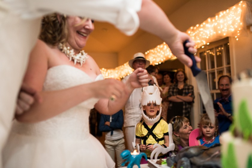 morrison willow ridge manor wedding photographer cutting cake