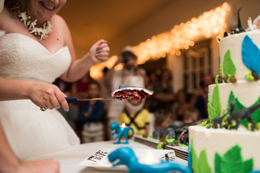 morrison willow ridge manor wedding photographer cutting cake