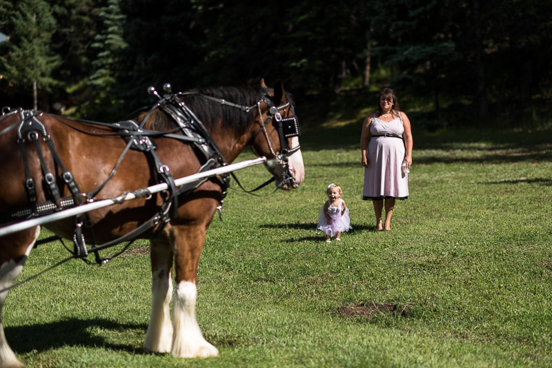 Emily and Ryan Lower Lake Ranch Wedding Photography child and horse