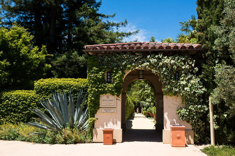 Sonoma Vineyard Proposal Photography Chateau St Jean main entrance