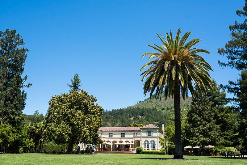 Sonoma Vineyard Proposal Photography Chateau St Jean estate