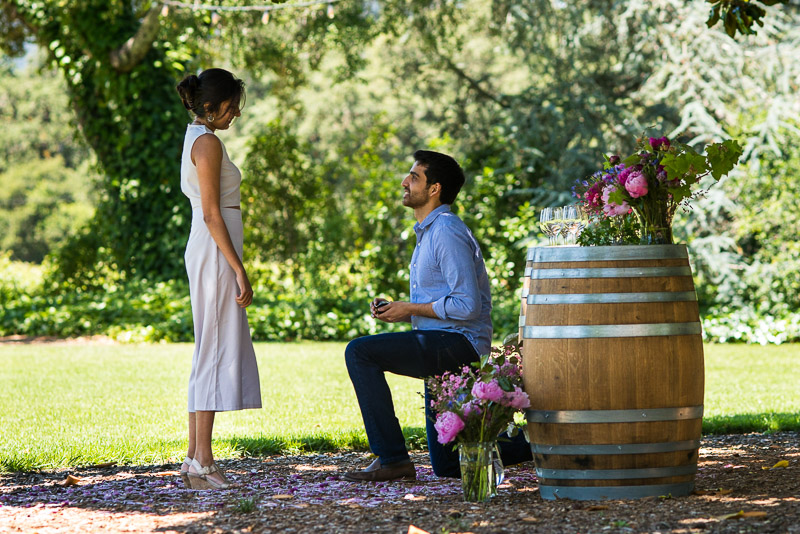 Sonoma Vineyard Proposal Photography Chateau St Jean on one knee