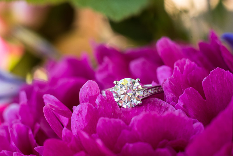 Sonoma Vineyard Proposal Photography Chateau St Jean engagement ring with flower