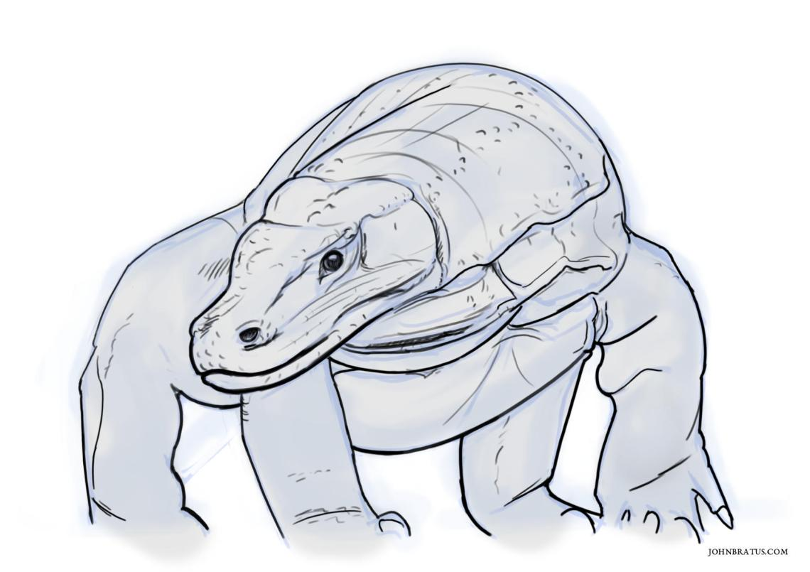 Digital sketch of a komodo dragon