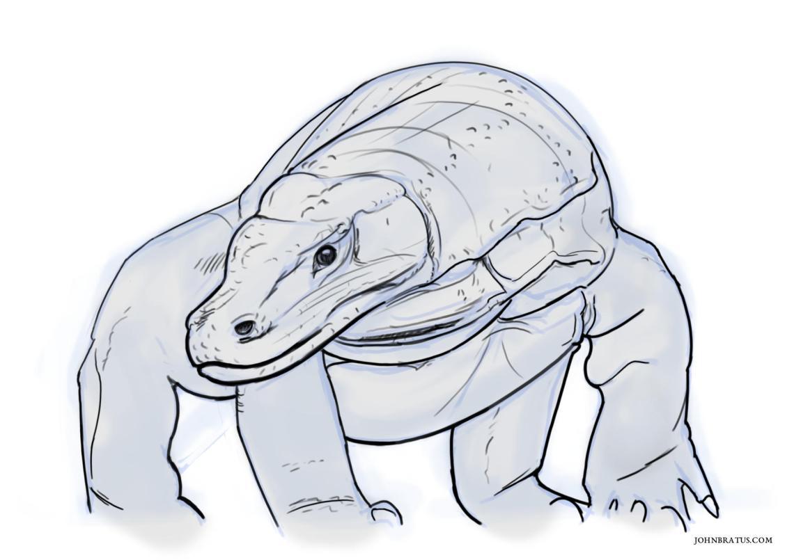 Digital sketch of a komodo dragon