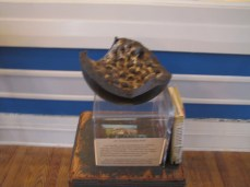 A shattered cannon ball showing what is inside in the Lloyd Tilghman House & Civil War Museum.