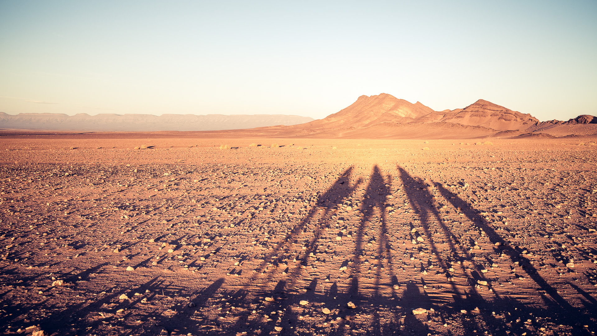 Desert sunset with shadows cast by the camels in morocco